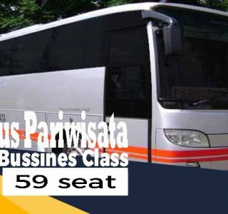 bus pariwisata murah