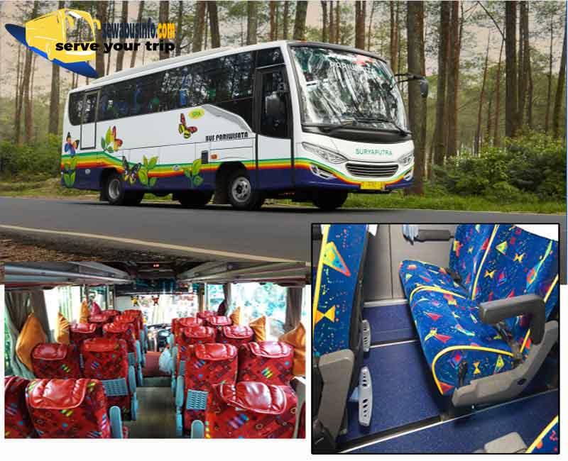 Sewa Bus Medium