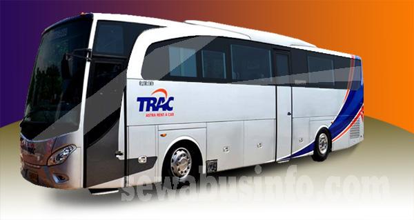 Bus Pariwisat Trac