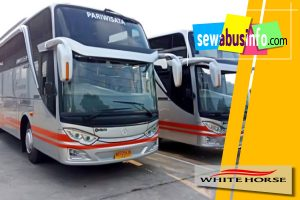 Daftar harga sewa bus pariwisata White Horse