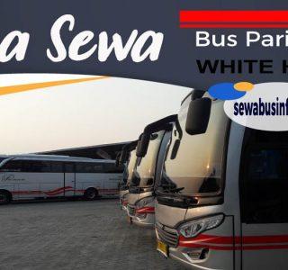 jasa sewa bus pariwisata white horse