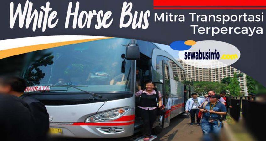 White horse bus
